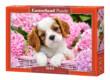 Castorland B-52233 - Kutyakölyök rózsaszín virágok közt - 500 db-os puzzle