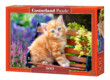 Castorland B-52240 - Vörös cica - 500 db-os puzzle
