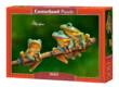 Castorland B-52301 - Béka család - 500 db-os puzzle