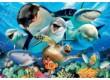 Educa 18062 - Víz alatti szelfi - 100 db-os puzzle