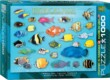 EuroGraphics 6000-1173 - Tropical Fish - 1000 db-os puzzle
