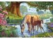 Schmidt 56161 - Pferde am Bach  - 150 db-os puzzle