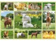 Schmidt 56194 - Baby Farm Animals - 100 db-os puzzle