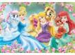 Trefl 14223 - Disney Princess kedvencek - 24 db-os Maxi puzzle
