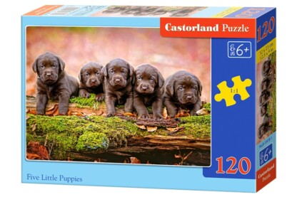 Castorland B-13418 - Öt kiskutya - 120 db-os puzzle