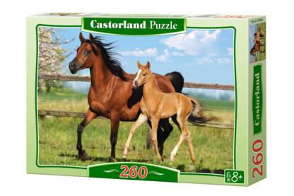 Castorland B-27064 - Kanca és csikója - 260 db-os puzzle