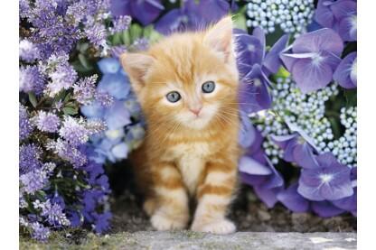 Clementoni 30415 - Vörös cica virágok közt - 500 db-os puzzle