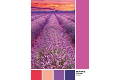 Clementoni 39493 - Pantone 674 - Levendula és naplemente - 1000 db-os puzzle