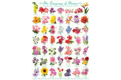 EuroGraphics 6000-0579 - The Language of Flowers - 1000 db-os puzzle