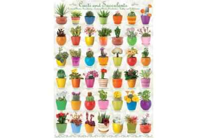 EuroGraphics 6000-0654 - Cacti and Succulents - 1000 db-os puzzle