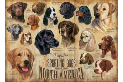Cobble Hill 80022 - Sporting Dogs - 1000 db-os puzzle