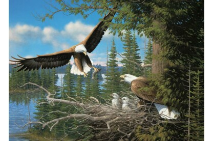 Cobble Hill 80070 - Nesting Eagles - 1000 db-os puzzle