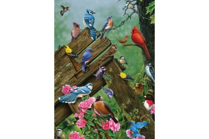 Cobble Hill 80086 - Birds of the Forest - 1000 db-os puzzle