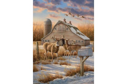 Cobble Hill 80106 - Rural Route - 1000 db-os puzzle