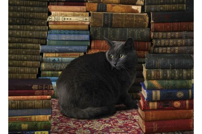 Cobble Hill 80124 - Library Cat - 1000 db-os puzzle
