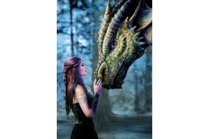 Educa 17099 - Lány és sárkány - 1000 db-os puzzle