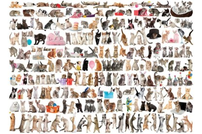 EuroGraphics 6000-0580 - The World of Cats - 1000 db-os puzzle