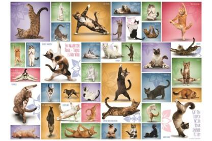 EuroGraphics 6000-0953 - Yoga Cats - 1000 db-os puzzle
