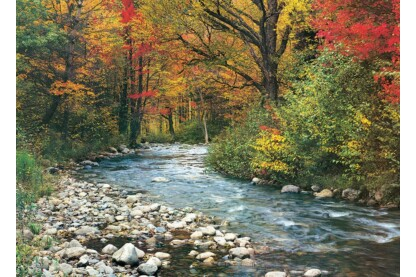 EuroGraphics 6000-2132 - Forest Stream - 1000 db-os puzzle