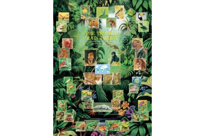EuroGraphics 6000-2790 - The Tropical Rain Forest - 1000 db-os puzzle