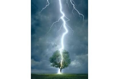 EuroGraphics 6000-4570 - Lightning Striking Tree - 1000 db-os puzzle