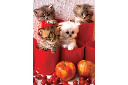 EuroGraphics 6000-4674 - Kittens in Pots - 1000 db-os puzzle