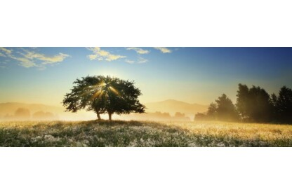 Heye 29901 - Panoráma puzzle - Play of Light, Edition Humboldt - 1000 db-os puzzle
