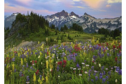 Heye 29903 - Tatoosh Mountains, Humboldt - 2000 db-os puzzle