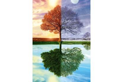 Schmidt 58223 - Jahreszeiten-Baum - 500 db-os puzzle