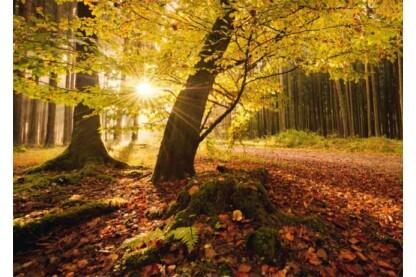 Schmidt 59384 - Autumn Magic, Hefele - 1000 db-os puzzle