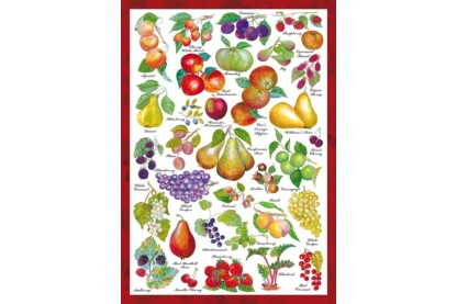 Schmidt 59569 - Countryside Art - Früchte - 1000 db-os puzzle