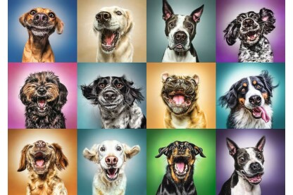 Trefl 10462 -  Vicces kutya portrék - 1000 db-os puzzle