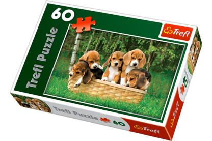 Trefl 17166 - Beagle kiskutyák - 60 db-os puzzle