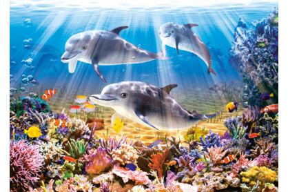 Castorland B-51014 - Delfinek a víz alatt - 500 db-os puzzle