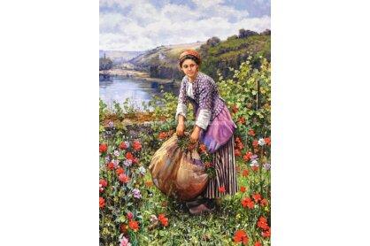 Castorland C-151004 - Daniel Ridgway Knight - Fűszedő lány - 1500 db-os puzzle