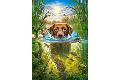 Castorland B-52882 - Úszó kutya - 500 db-os puzzle
