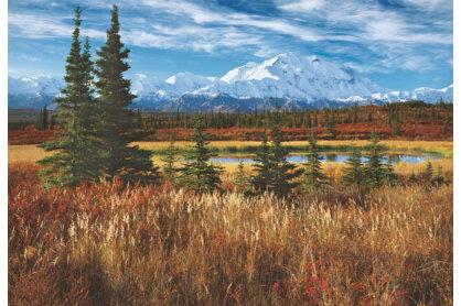 Educa 16008 - Denali Nemzeti Park - USA - 1500 db-os puzzle